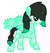 Ponyzebra