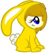 Pony bunny mi