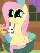 Fluttershy come