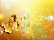 Wallpaper Fluttershy