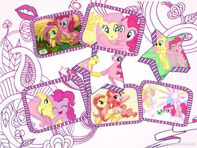 Collage Pinki Fluttershy