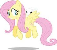 Fluttershy and angel.,,