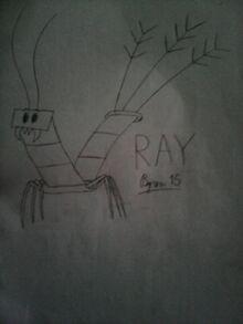Ray15