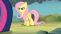658px-Pony up fluttershy by shadowillhcr-d49yz3g.png