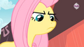 267px-Fluttershy trying to be assertive.png