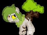 Paco el pony bonsai