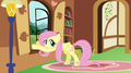637px-Fluttershy opening window S2E21.png