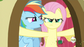 637px-Fluttershy not looking happy S2E21.png