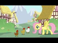 Fluttershy and Chicken's