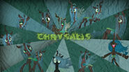 Chrysalis wallpaper by zozi664-d51a858