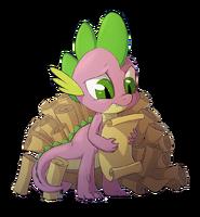 Spike4