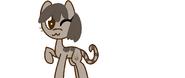 Pusheen el gato pony