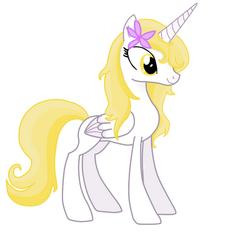 Pony shining