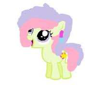 Pony peq