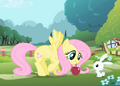 250px-Fluttershy opening theme.png