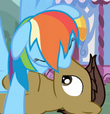 Rainbow Dash and Frank