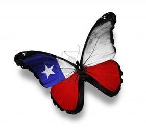 12665473-mariposa-bandera-chilena-aislado-en-blanco