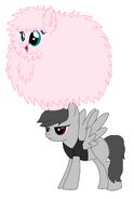 New Pegasus 5