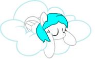 Cotton heart sleeping