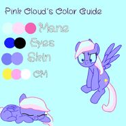 Pink Cloud Color Guide