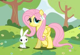 Fluttershy and ángel