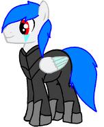 Platinum armor con su armadura