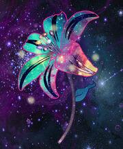 Flordeclarity