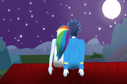 Mlp a beautiful night by rulette-d72z59c