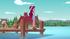 Gloriosa Daisy standing on the camp dock EG4