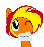 Adoptable12