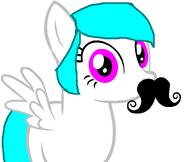 Cotton heart moustacho