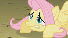 My little pony 538