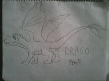 Draco15