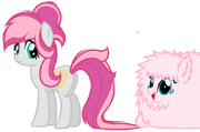 Fluffle and Fluffy