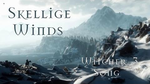 SKELLIGE WINDS - Witcher 3 Song by Miracle Of Sound
