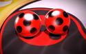 Ladybug Mirac