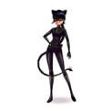 CharaImage Cat Noir Marinette