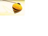 Trompo de Queen Bee