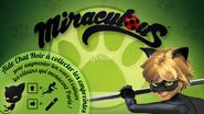 Miraculous Ladybug Game Chat Noir ver
