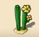 Twin cactus blooming in yellow