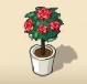 Red Rose Tree
