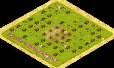 New-field