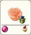 Orange marzipan rose