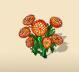 Orange Knawel Blossom