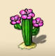Desert cactus with a pink blossom