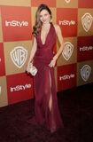 Miranda-Kerr-Best-Dress2es