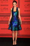 Kerr 2013 cdfa awards 007