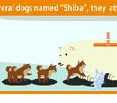 Pet Summoning