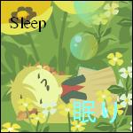 Sleep status