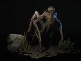 Human Spider
